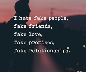 fake, hate, and friends image