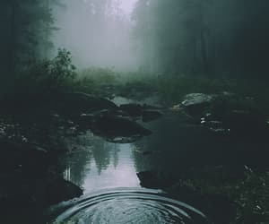 foggy, forest, and lake image