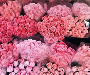 aesthetic, pink flowers, and rose bouquet image