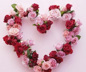 aesthetic, heart, and pink flowers image