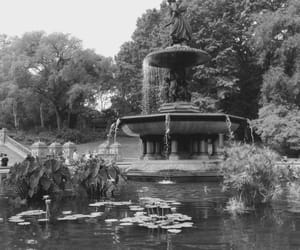 black and white, fountain, and new york city image