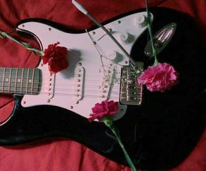 red, guitar, and rose image