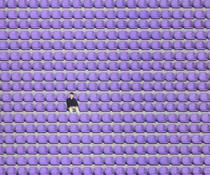 lavender, seating, and lilac image