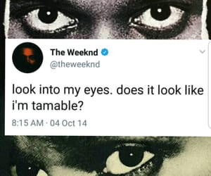 abel, quote, and the weeknd image