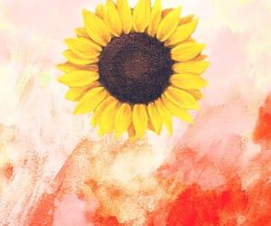 backround, flower, and orange image