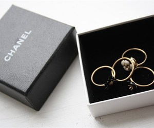 chanel, rings, and accessories image