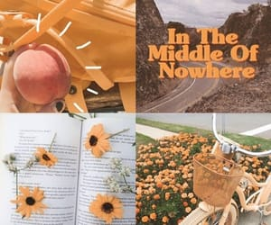 book, flowers, and middle image