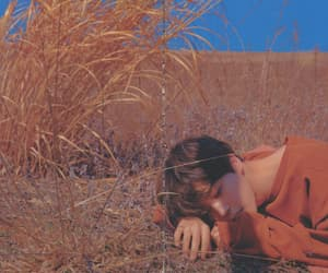 aesthetic, jimin aesthetic, and field image