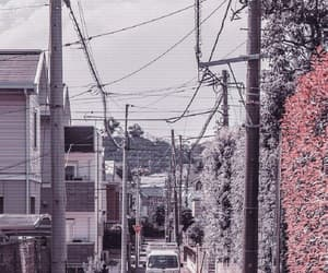 aesthetic and street image