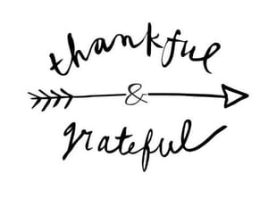 quotes, thankful, and grateful image
