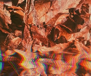 aesthetic, glitch, and warm image