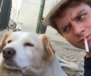 mac demarco and dog image