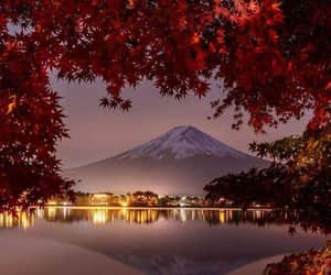 nature, photography, and japan image