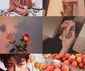 aesthetics, lover, and bambam image