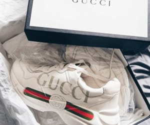aesthetic, designer, and gucci image