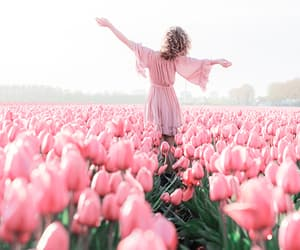 flowers, lovely, and spring image