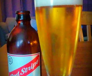 Lager, beer, and red stripes image