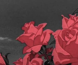 aesthetic, wallpapers, and flowers image