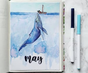 blue, may, and ocean image