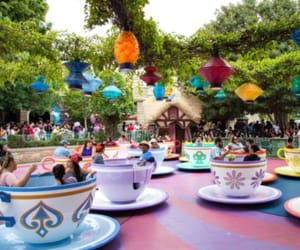 dizzy, rise, and teacups image