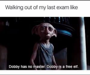 exam, final, and meme image