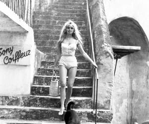 brigitte bardot and dog image