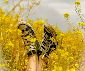 yellow, flowers, and converse image