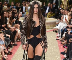 cannes, philipp plein, and dynasty image
