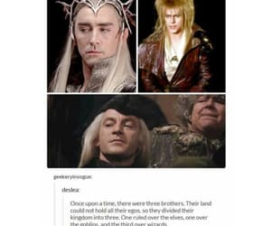 funny, harry potter, and hobbit image