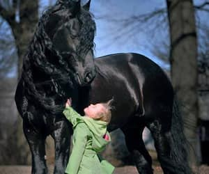 black horse, طفله, and child image