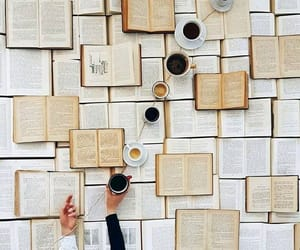 aesthetic, beige, and bibliophile image