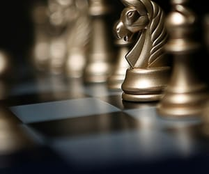 at, horse, and chess image