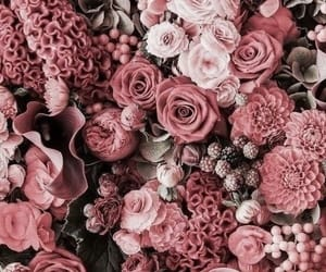 aesthetic, beautiful, and birthday image