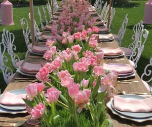 baby pink, garden, and home image