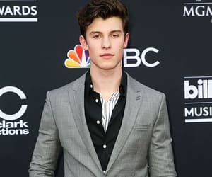 shawn, shawn mendes, and red carpet image