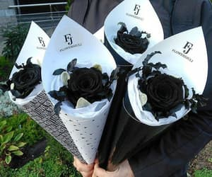 black, rosses, and flowers image