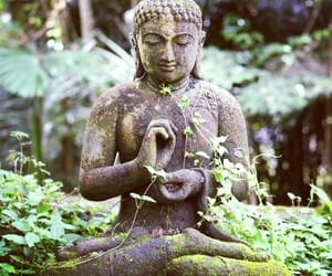 Buddha, nature, and buda image