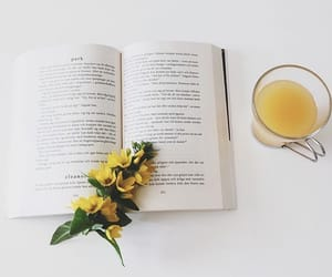 book, read, and flowers image