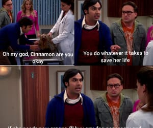 funny, the big bang theory, and bbt image