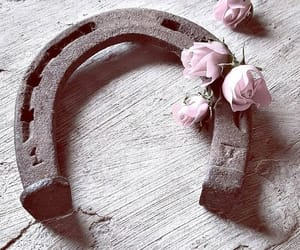flores, inspiracion, and vida image