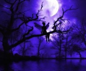 art, garden, and violet image