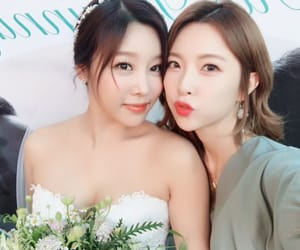 9muses, sungah, and 9 muses image