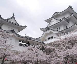 aesthetic, japan, and white image