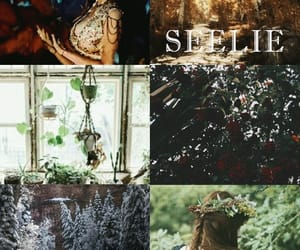 aesthetic, character, and faerie image