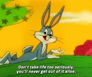 bunny and cartoon image