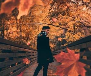 autumn, bahar, and boy image