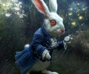 alice, alice in wonderland, and rabbit image