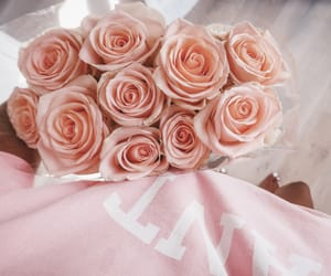flowers, pink, and tan image