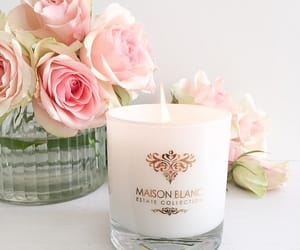 candle, roses, and classy image