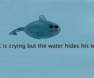 sad, shark, and cry image
